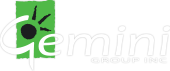 Gemini Group